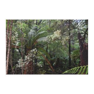 タスマニアの荒野TARKINEの国立公園 キャンバスプリント