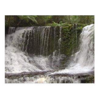 タスマニアオーストラリアの滝の自然の川 ポストカード