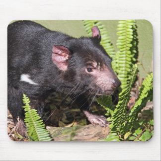 タスマニアンデビル、オーストラリア マウスパッド