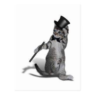 タップダンス猫 ポストカード