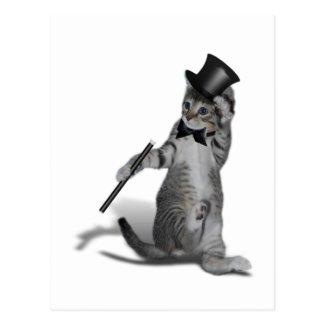 タップダンス猫 葉書き