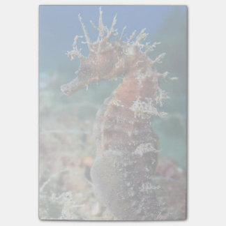 タツノオトシゴ|の海馬Ramulosus ポストイット