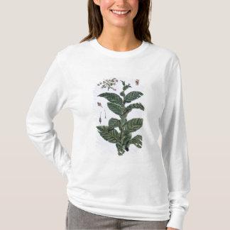 タバコ植物、「コレクションPrecieuseからのプレート7、 Tシャツ