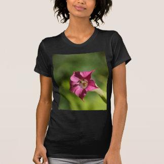 タバコ(Nicotianaのtabacum)の花 Tシャツ
