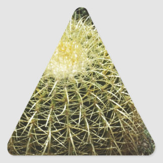 タマサボテン 三角形シール