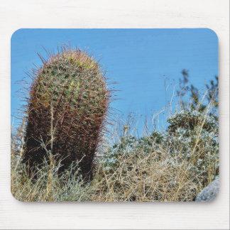 タマサボテンAnza Borregoの砂漠Cactのサボテン マウスパッド