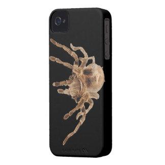 タランチュラのくも Case-Mate iPhone 4 ケース