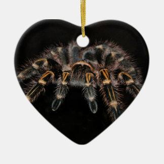 タランチュラの大きいくもの毛深い蜘網膜 セラミックオーナメント