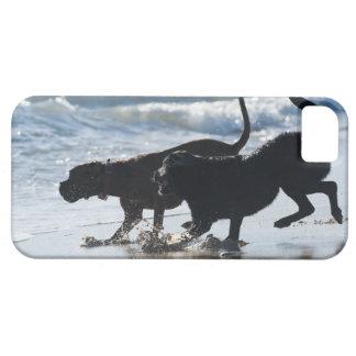 タリファカディスアンダルーシアスペイン iPhone SE/5/5s ケース