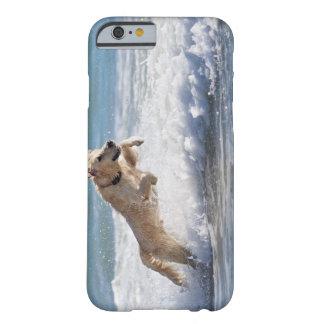 タリファ、カディス、アンダルーシア、スペイン2 BARELY THERE iPhone 6 ケース