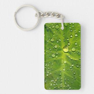 タロイモの葉の雨滴 キーホルダー