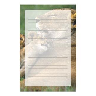 タンザニアのNgorongoroの噴火口。 アフリカのライオンの母 便箋