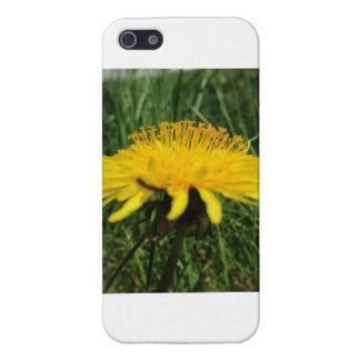 タンポポ iPhone 5 CASE