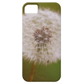 タンポポ iPhone SE/5/5s ケース