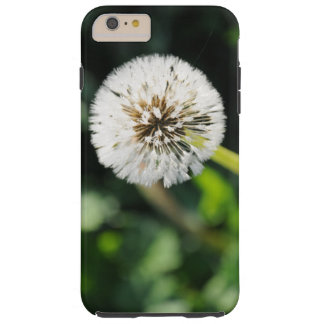 タンポポ TOUGH iPhone 6 PLUS ケース