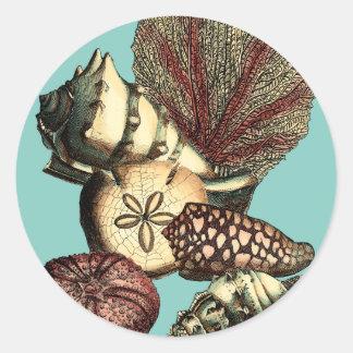 ターコイズの貝および赤い珊瑚のコレクション ラウンドシール