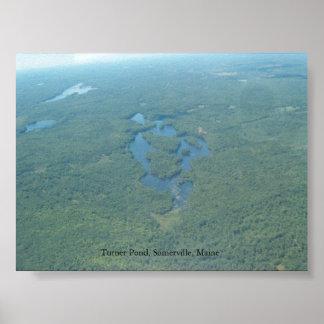 ターナーの池、サマビルメイン ポスター