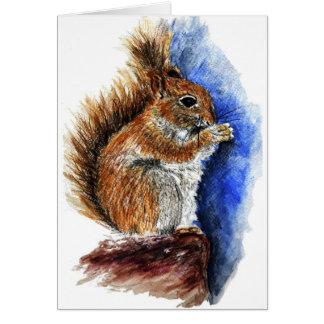 ダグラスのリス、水彩画の鉛筆 カード