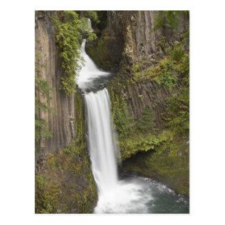 ダグラス郡、オレゴンのToketeeの滝 ポストカード