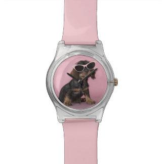 ダックスフントの子犬の身に着けているサングラス 腕時計