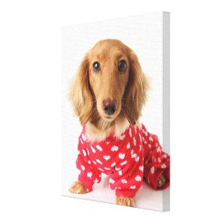 ダックスフントの子犬の身に着けているバレンタインの用品類 キャンバスプリント