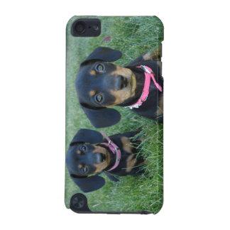 ダックスフントの子犬 iPod TOUCH 5G ケース