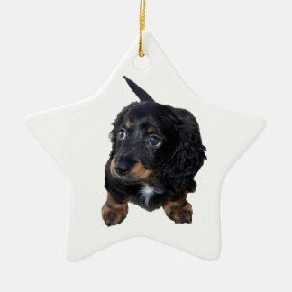 ダックスフントの小犬のかわいく美しい写真、ギフト セラミックオーナメント