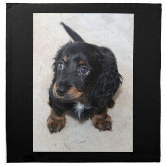 ダックスフントの小犬のかわいく美しい写真、ギフト ナプキンクロス