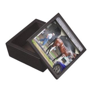 ダラスステュワートの馬小屋 ギフトボックス