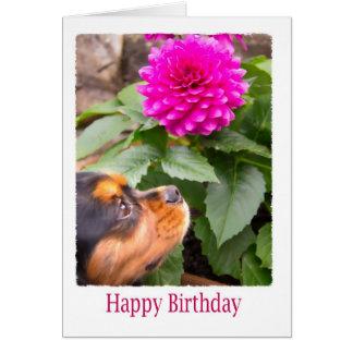 ダリアおよびスパニエル犬犬との誕生日の願い カード