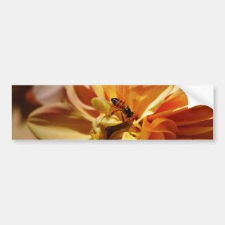 ダリアの花および意味 バンパーステッカー