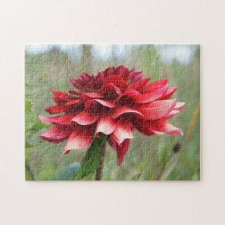 ダリアの花、ギフト用の箱が付いている11x14写真のパズル ジグソーパズル
