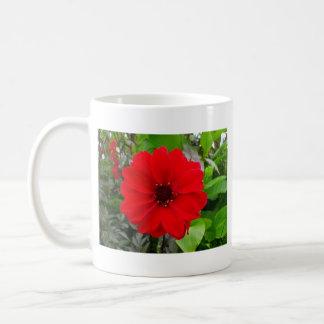 ダリア- Llandaffの司教 コーヒーマグカップ