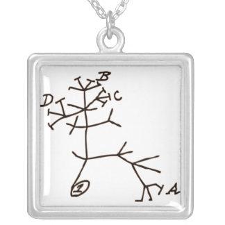 ダーウィンの木 シルバープレートネックレス