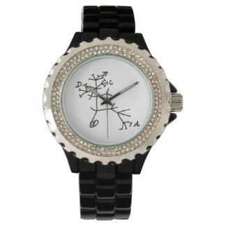 ダーウィンの生命の樹 腕時計