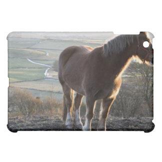 ダービーシャー、イギリス iPad MINIカバー