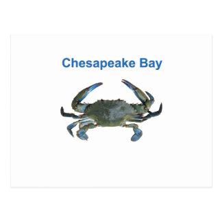 チェサピーク湾の青カニ ポストカード