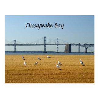 チェサピーク湾橋 ポストカード