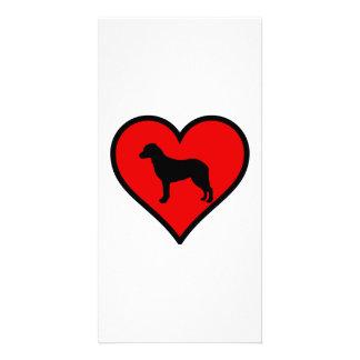 チェサピーク・ベイ・レトリーバーのハート愛犬 カード