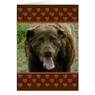 チェサピーク・ベイ・レトリーバーのバレンタイン カード