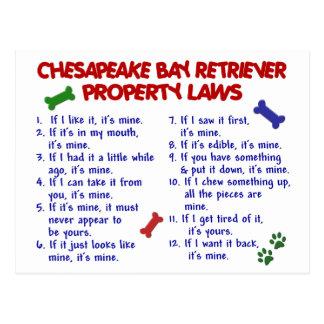 チェサピーク・ベイ・レトリーバーの特性の法律2 ポストカード
