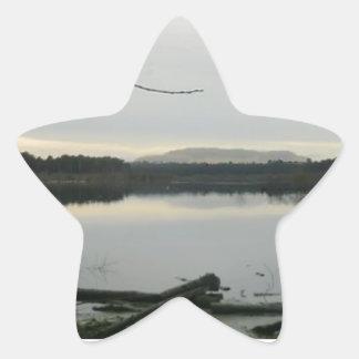 チェシャーのBlakemereのコケ 星シール