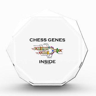 チェスの遺伝子の内部(DNAの写し) 表彰盾