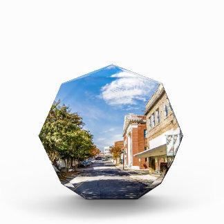 チェスターの町のサウスカロライナ都心の地区 表彰盾
