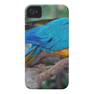 チェスターIV Case-Mate iPhone 4 ケース