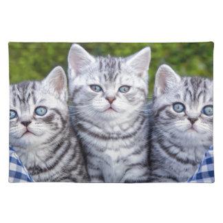 チェック模様のバスケットの3匹の若い銀製の虎猫猫 ランチョンマット