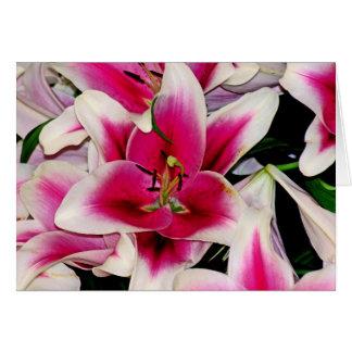 チェルシーの赤と白の花(1) カード