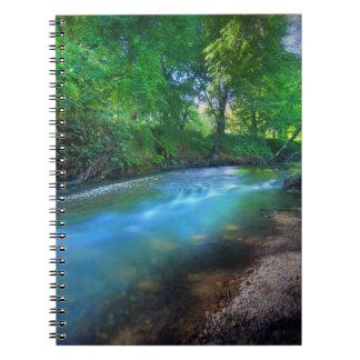 チコの大きい入り江、チコの州立大学 ノートブック