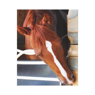 チャドブラウンの馬小屋 キャンバスプリント