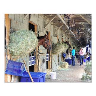 チャドブラウンの馬小屋 フォトプリント